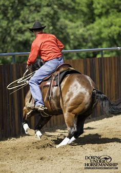 """Riding Exercise #6: Advanced Rollbacks Goal: To build on the basics of rolling back that you've already established in previous exercises. You're looking for the horse to listen to the word """"whoa,"""" respect your hands and use his hindquarters in the turn better. Learn more https://www.downunderhorsemanship.com/Store/Product/MEDIA/D/254/"""