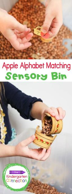 Fall is almost here which means it's time to get out fall-themed Kindergarten learning activities! This free Apple Alphabet Sensory Bin is great for bringing a fresh autumn approach to identifying uppercase and lowercase letters. Your kids will love how engaging and hands-on this activity is! Literacy Skills, Literacy Activities, Literacy Centers, Kindergarten Learning, Uppercase And Lowercase Letters, Sensory Bins, Autumn, Fall, Lower Case Letters