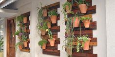 Saiba Como Montar O Seu Próprio Jardim Vertical