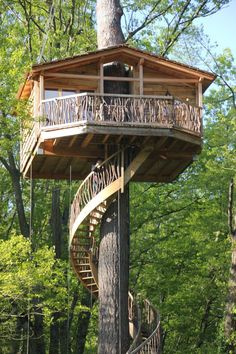 Food and Travel Adult Tree House, Woodland House, Cool Tree Houses, Tree House Designs, Bird Tree, Bilbao, Tree Tops, Cozy Cottage, Types Of Houses
