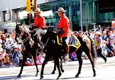 Canadian Royal Mounted Police - police horse