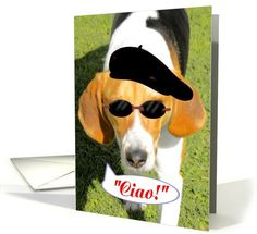 Birthday-Italian -Buon Compleanno- Cane-HoundDog w/sunglasses-beret card
