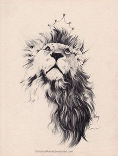Lion tattoo ideas for women and men