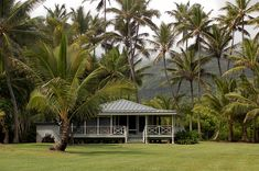 Grains of Paradise: Hana Coast. Hawaii Life, Hawaii Hawaii, Hawaii Vacation, Hawaii Travel, Hawaii Honeymoon, Hawaii Wedding, Future House, Plantation Style Homes, Caribbean Homes