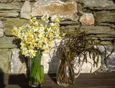Pelion in Spring 2017 Glass Vase, Spring, Bouquets, Plants, Home Decor, Decoration Home, Bouquet, Room Decor, Bouquet Of Flowers