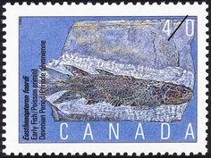 Stamp: Eusthenopteron foordi, Early Fish, Devonian Period (Canada) (Prehistoric Canada (2nd series), Primitive Vertebrates) Mi:CA 1222,Sn:CA 1308,Yt:CA 1180,Sg:CA 1417