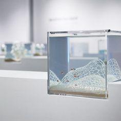 Haruka Misawa's Enchanting 3D Printed Waterscape Aquariums