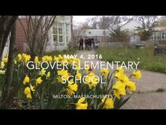 The Glover Elementary School in Milton, Massachusetts has a special tradition of providing sanctuary to nesting ducks inside the school's interior courtyard....