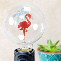 Looking for unique home accessories? This flamingo and palm tree light bulb from Temerity Jones is a must-have. Free Worldwide Delivery & No Minimum Spend