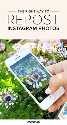 Here's the Right Way to Repost Instagram Photos