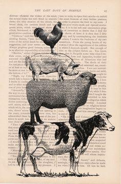 Free Vintage Print Farm Animals - Bing images