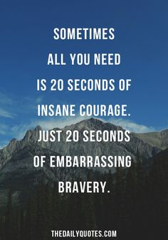 Sometimes all you need is 20 seconds of insane courage. Just 20 seconds of embarrassing bravery. thedailyquotes.com