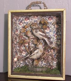 Bird diorama/shadow box. Happening.