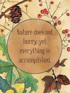 Nature does not hurry , yet everything is accomplished.