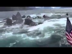 The Immoral Minority: Alaskan fisherman's giddy reaction to a breaching pod of humpback whales.
