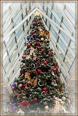 Christmas in Pittsburgh, Wintergarden PPG Place