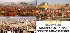 Pride With Colors - The Amazing State Of India - #India is a country with several states and numerous amounts of #Festivals that are held every month in every part of the country. Most of these festivals are related to the events that are happened in the history with most of the events having mere connection with it. For booking this #Tour_Package or for any other details contact us at http://www.how2learn.in/fly-with-colors-and-variations-to-the-desert-state