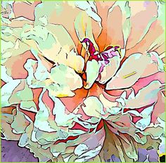 peony by Mindy Newman love the style and compostion