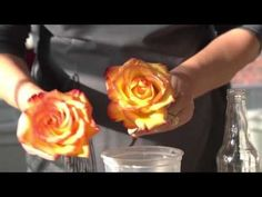 How to Preserve Flowers with Wax | Wax Roses | Petal Talk