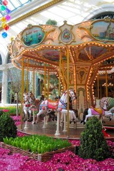 Oh the childhood memories Carousel