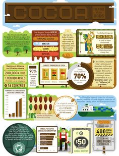 Fun Facts About Cocoa! (Infographic)