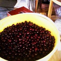 Fresh tundra cranberries Cranberries, Arctic, Beans, Fresh, Vegetables, Food, Vegetable Recipes, Eten, Veggie Food