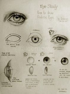 Drawing Realistic Eye Study - How to draw realistic eyes (Thank you, García García García García García Powers ! Realistic Eye Drawing, Drawing Eyes, Drawing Sketches, Painting & Drawing, Art Drawings, Pencil Drawings, How To Draw Realistic, How To Draw Eyes, Pencil Sketching