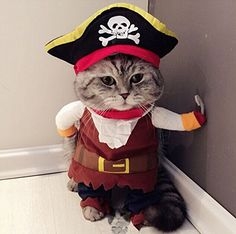 Pet Dog Cat Pirate Sailor Halloween Christmas Gift Fancy Dress Costume Outfit Clothes-S
