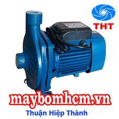 Máy bơm nước mini 220v PURITY CP 220C 3HP