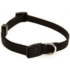 Majestic cat Adjustable Safety Cat Collar - 8 -12 in. ** Special cat product just for you. See it now! : Cat Collar, Harness and Leash
