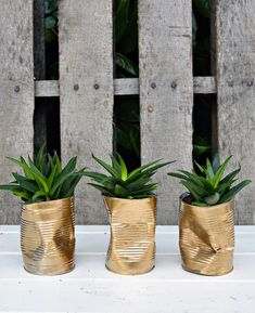 How to Make Gold Crushed Can DIY Planters I couldn't find the shabby glam planters I wanted for my table so I made my own. It only took me 10 minutes to make these crushed gold DIY planters. Gold Diy, Make Gold, Recycling, Creation Deco, Ideias Diy, Diy Planters, Green Plants, Potted Plants, Diy Art