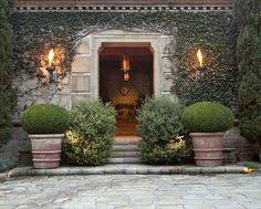 love this entrance. Like the use of shrubs in pots. Think I am going to do this