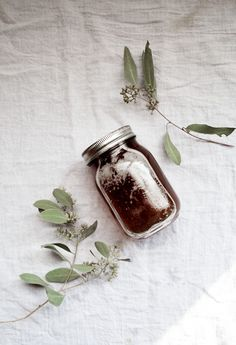 The Secret to a Strong Immune System // Free People Blog ... {recipe for elderberry, cinnamon, clove, and ginger tonic}