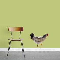 Real Life Chicken - Printed Wall Decal - Sweetums Wall Decals