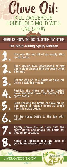 Clove Oil: Kill Dangerous Household Mold with One Spray
