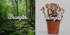 Adeevee - Wrangler: Wrangler Vs Wrongler