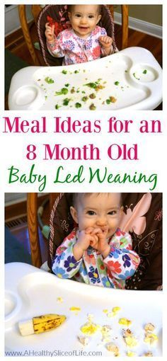meals for an 8 month old- baby led weaning. Great snack and meal ideas for your weaning infant! month old baby food meals ideas recipes for Baby Led Weaning Meal Ideas: 8 Months Old 8 Month Old Baby Food, Baby Food 8 Months, Baby Month By Month, 8 Month Old Baby Activities, 4 Months, Baby Recipes For 8 Month Old, 8 Month Olds, Weaning Foods, Baby Weaning