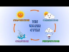 The Water Cycle- How rain is formed-Lesson for kids - YouTube watch this one first. Have the boys watch it once then watch it a second time and copy down the vocab words.