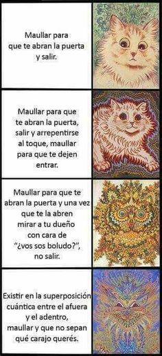 La Ultima Maestra Del Repoio :v - Momazos Random 25 - Página 2 - Wattpad