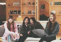 Some old photos of our girls 🖤💗 Yg Entertainment, South Korean Girls, Korean Girl Groups, Kpop, Blackpink Memes, Blackpink Photos, Blackpink And Bts, Blackpink Fashion, Jennie Blackpink