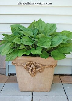 This blogger looked at a broken laundry basket and saw a rustic planter. Make one for your own porch with hot glue and a few strips of burlap. Get the tutorial at Elizabeth Joan Designs »  - GoodHousekeeping.com