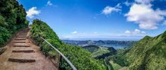 "São Miguel in the Azores is often called ""the green island"" because of the flora that covers it. Get some tips for what to see and do on São Miguel. Highlights, Climbing, Tips, Vineyard, Portugal, Flora, Island, Outdoor, Europe"