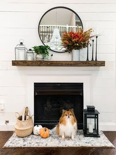 Fall Botanical Inspired Family Room #falldecor #fall Fall Decor, Family Room, Home, Ad Home, Autumn Decorations, Family Rooms, Homes, Living Room, Drawing Rooms