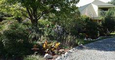 The Gardens of Mount Dora: A Repurposed Wildlife Garden