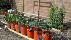 Put beside raised garden bed.