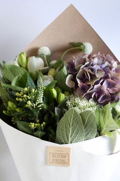 bloom - bouquet of beautiful purple & green flowers // floral love Flowers Nature, Green Flowers, Beautiful Flowers, Beautiful Things, Exotic Flowers, Yellow Roses, Spring Flowers, Pink Roses, Deco Floral