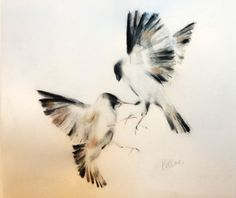 ARTFINDER: Battle by Kellas Campbell - Two sparrows in mid-air battle. Ink, charcoal, graphite and iridescent pastel.