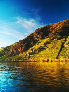 Mosel River in Germany... Where the grapes of my favorite Riesling are grown.