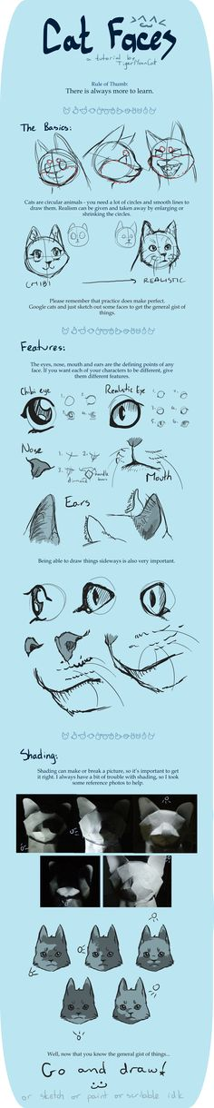 Cat Faces [Tutorial] by ~TigerMoonCat on deviantART