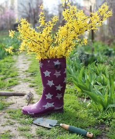 flowers inspirations :)